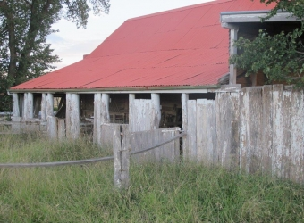 Stables