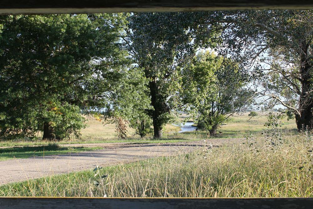 River Cottage Views